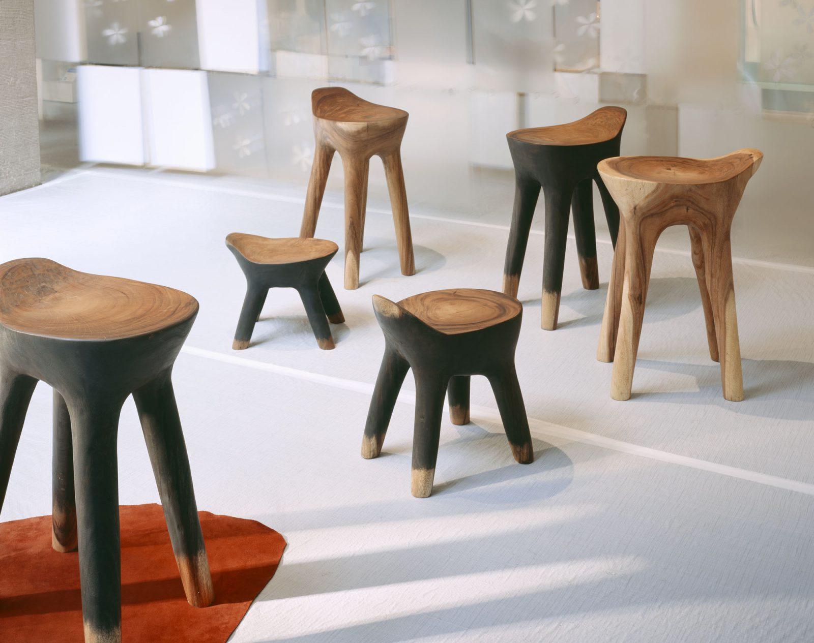 animal. stool